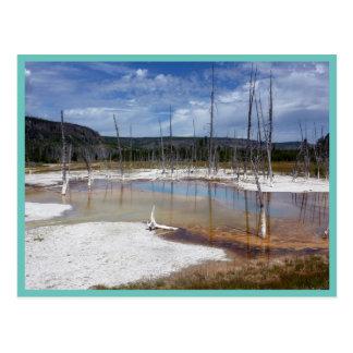 Yellowstone: Opalescent Pool Postcard