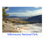 Yellowstone Park Mammoth Hot Springs Post Card