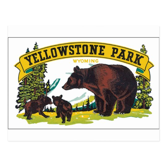Yellowstone Park with Bear Advertisement Postcard