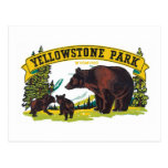 Yellowstone Park Wyoming Post Cards