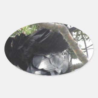 Yellowstone, Ravens, Original Photography Oval Sticker