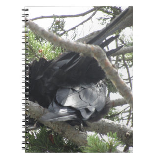 Yellowstone, Ravens, Original Photography Spiral Notebook