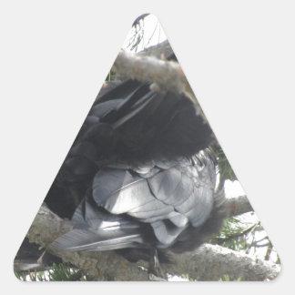 Yellowstone, Ravens, Original Photography Triangle Sticker
