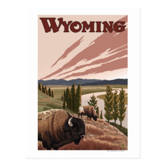 Yellowstone River Bison Vintage Travel Poster Post Card
