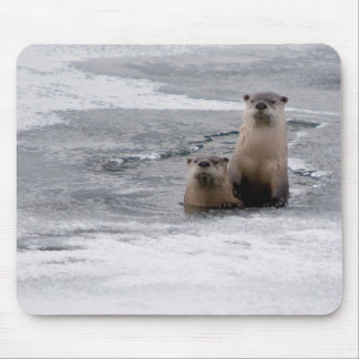 Yellowstone River Otters Mouse Pad