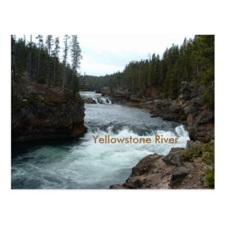 Yellowstone River Postcard