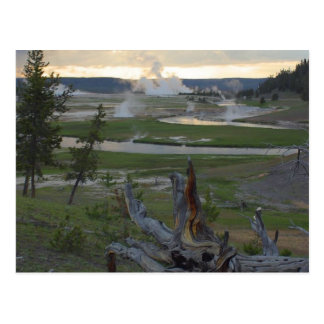 Yellowstone Sunsets Postcard