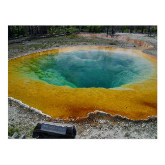 Yellowstone Thermal Spring In Morning Post Card