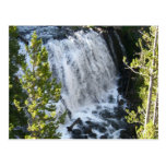 Yellowstone Waterfall Postcard