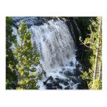 Yellowstone Waterfall Postcard