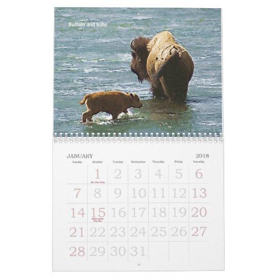 Yellowstone Wildlife 2008 Calendar