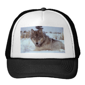 Yellowstone-wolf-17120 Trucker Hat