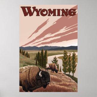Yellowstone, Wyoming - Yellowstone River Bison Print