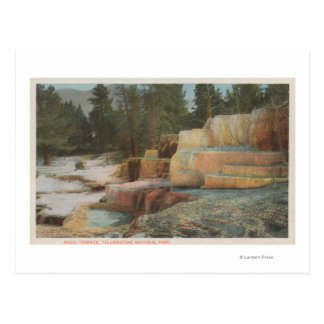 Yellowstone, WYView of Angel Terrace Postcard