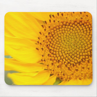 YellowSunflower Mouse Pad