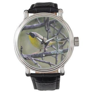 Yellowthroat común relojes de pulsera