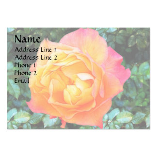 Yeloow Pink Fancy Rose Large Business Cards (Pack Of 100)