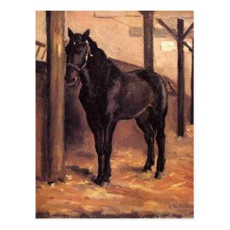 Yerres, caballo de bahía oscuro en el establo de postales