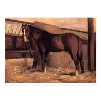 Yerres, caballo de bahía rojizo en el establo de postales