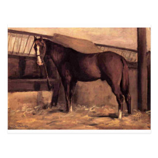 Yerres, Reddish Bay Horse in the Stable by Gustave Postcard