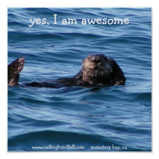 yes i am awesome sea otter poster