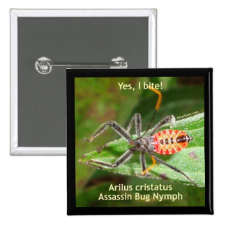 Yes I Bite Assassin Bug Pins