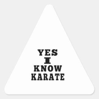 Yes I Know Karate Triangle Sticker
