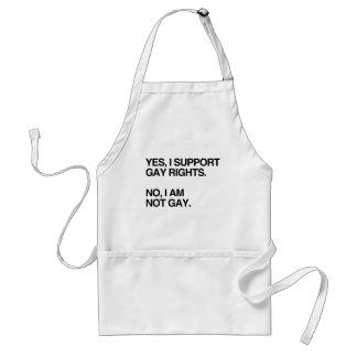 YES, I SUPPORT GAY RIGHTS.png Adult Apron