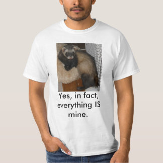 Yes, in fact, everything IS mine. Tee Shirts