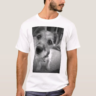 Yes Master, I'm All Ears T-Shirt