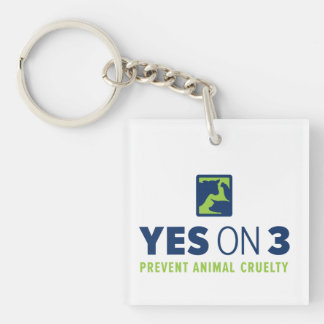 Yes on 3! Keychain