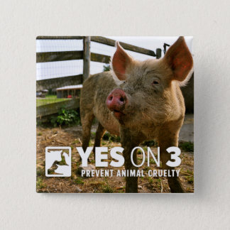 Yes on 3! Mini Button