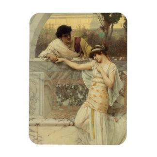 Yes or No Proposal Art Rectangular Photo Magnet