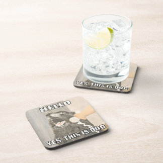 Yes, This is Dog Coasters