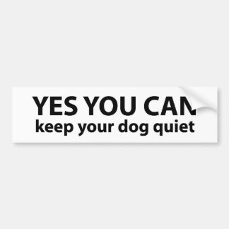 Yes, You Can ---Bumper Sticker