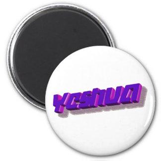 Yeshua 3D Mauve Magnet
