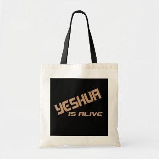 Yeshua es noir encariñado del craquée vivo del ter bolsa