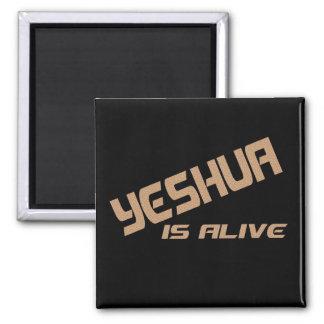 Yeshua es noir encariñado del craquée vivo del ter imán cuadrado