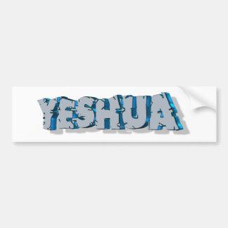 Yeshua Roc Bleu 3D Bumper Sticker
