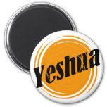 Yeshua Sphere Refrigerator Magnets