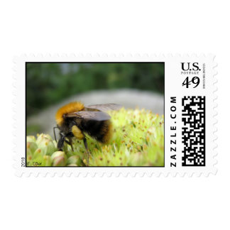 Yet another bumble bee postage
