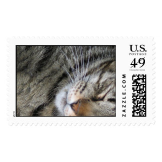 Yeti Postage Stamps