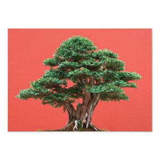 Yew bonsai 5x7 paper invitation card