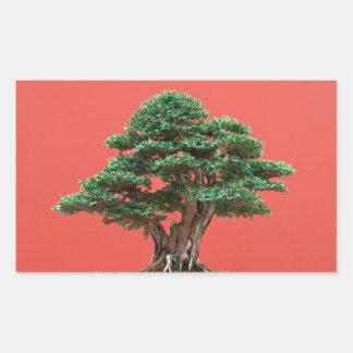 Yew bonsai rectangular sticker