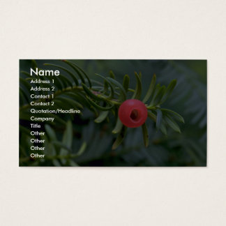 Yew tree fruit (taxus brevifolia) business card