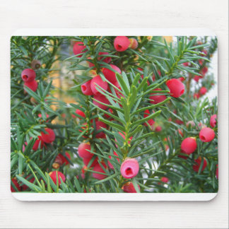 Yew tree mouse pad