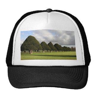 Yew Trees at Hampton Court, UK Trucker Hat