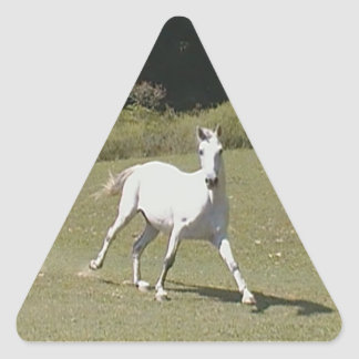"""Yield"" Horse Sticker"