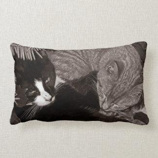 Yin Yang Cats Lumbar Pillow