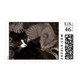 Yin Yang Cats Postage Stamp